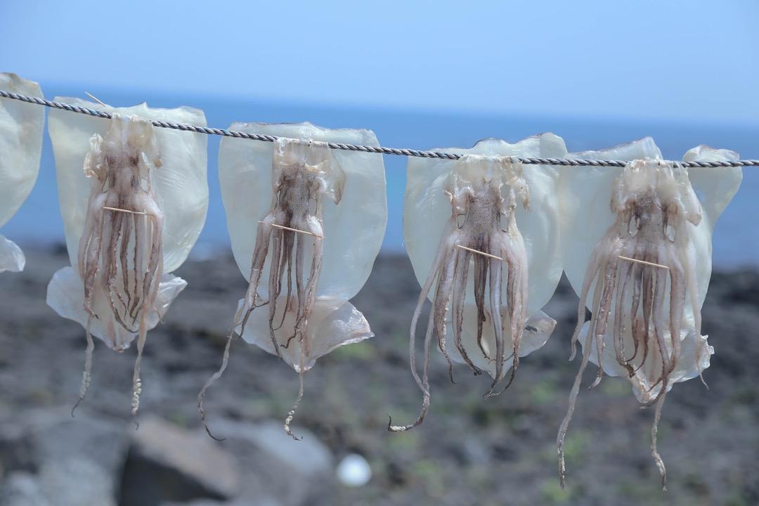 dried-squid