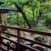福岡のオススメ観光。友泉亭公園は家族で楽しめる日本式庭園。