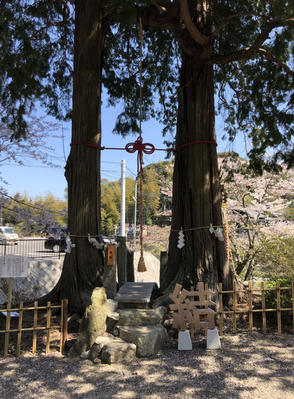 takeo-shrine1