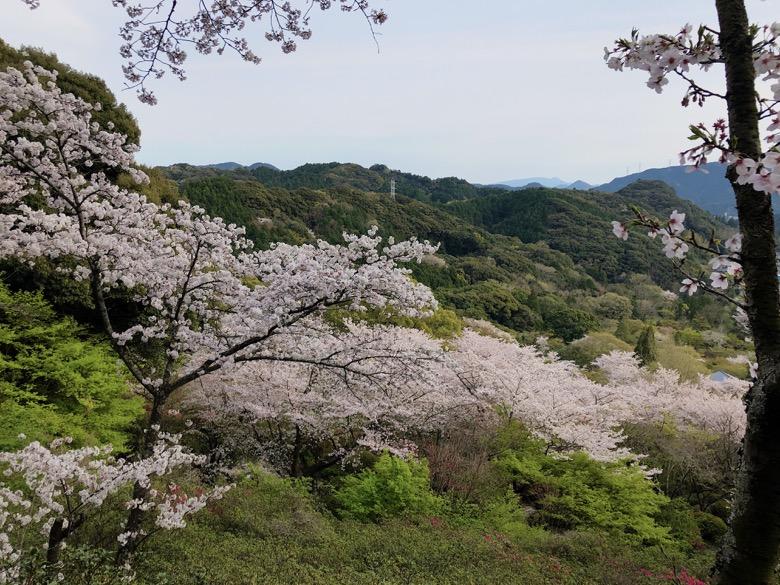 mifuneyama3