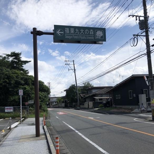 kyudai-no-mori1
