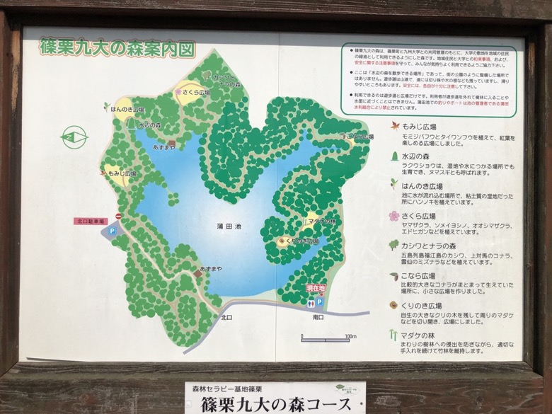 kyudai-no-mori4