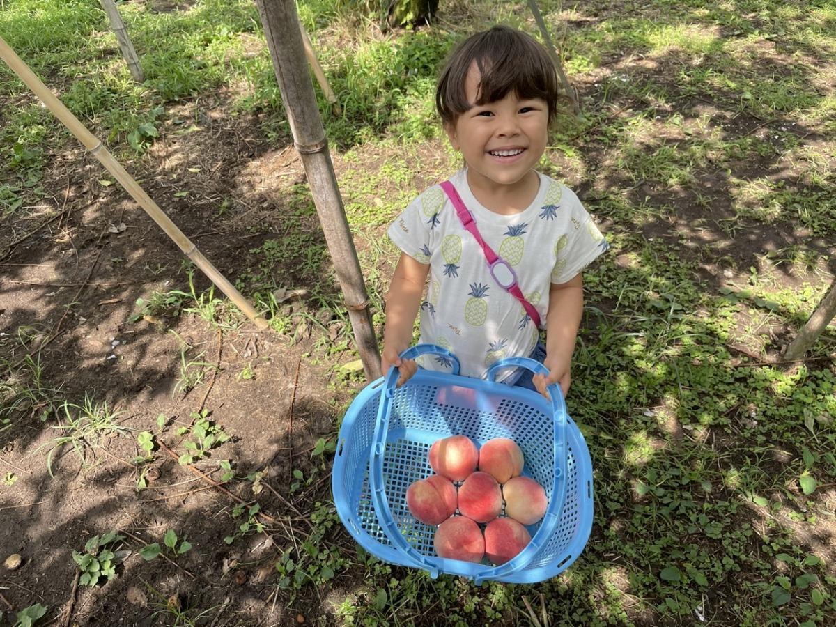 meikaenfruit-peach3