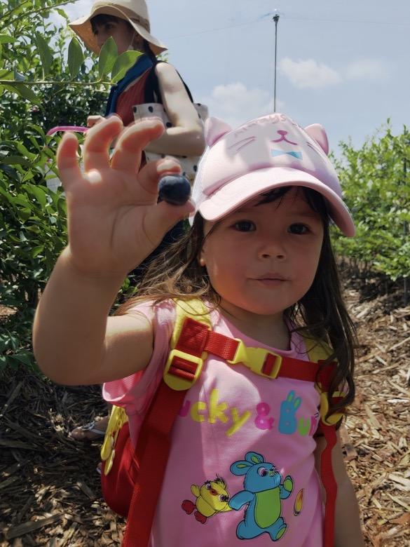 kids-berry-garden7