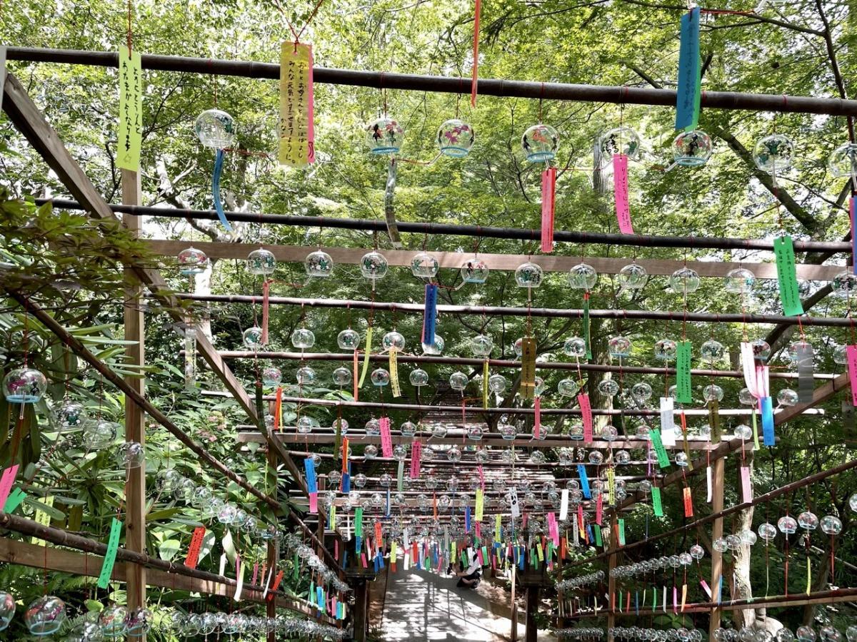 kaeru-dera-festival